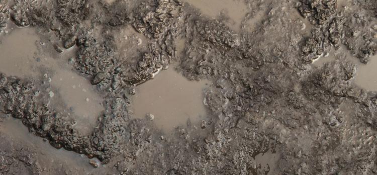 Waterlogged soil
