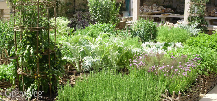 A well-designed raised bed garden