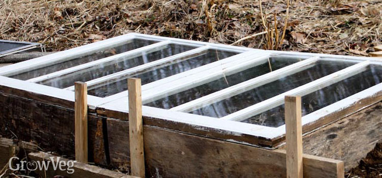 Cold frame made from window frames