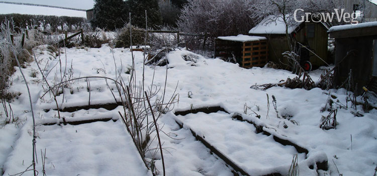 https://s3.eu-west-2.amazonaws.com/growinginteractive/blog/wintry-garden-2x.jpg