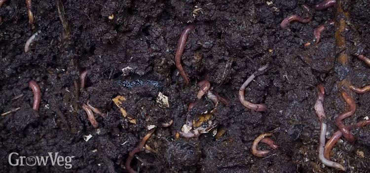 """Composting"