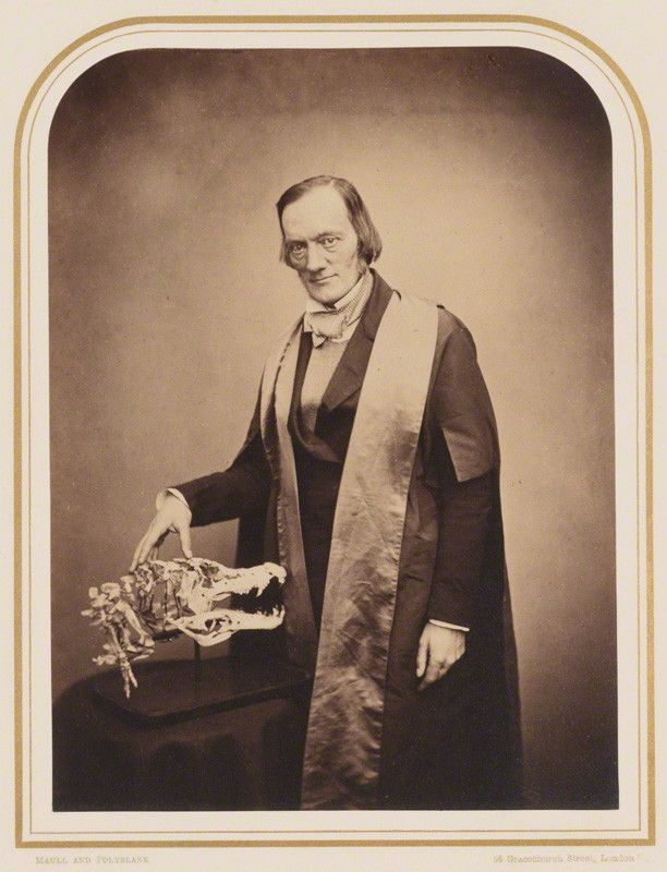 Photo of Richard Owen, British anatomist, biologist and palaeontologist.  He is shown standing next to an animal skull