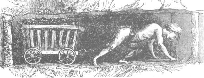 Illustration of a Victorian Hurrier pulling a tub of coal.  The boy is on all fours in a narrow tunnel.