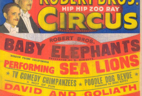 Entertaining Leeds:  At the Circus