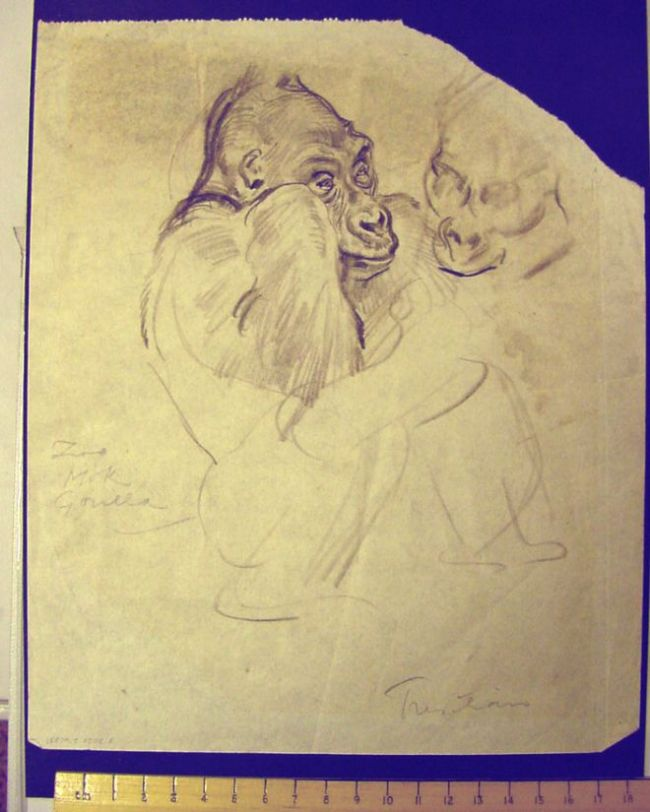 Pencil drawing showing Mok's face and arm.