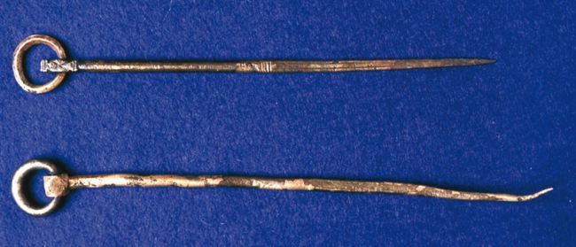 Two gold cloak pins with circles at one end, with a long thin pin attached.