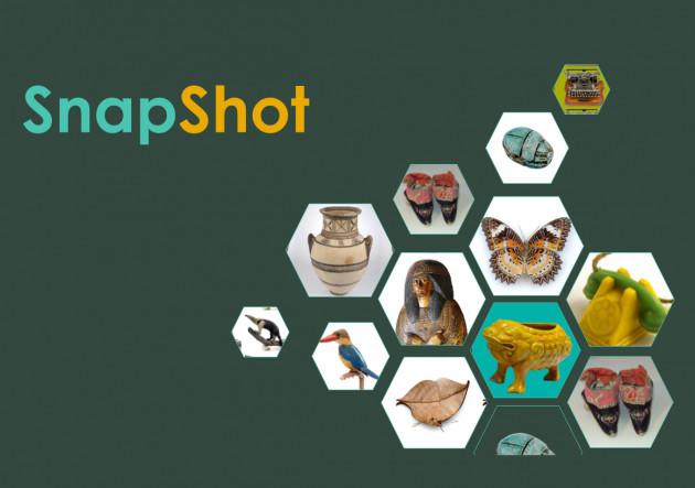 Museum Snapshot