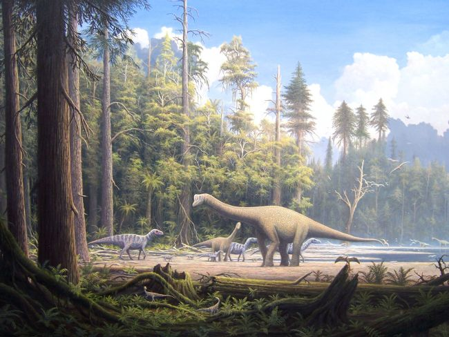 Colour illustration showing a beach environment with a forest edge and several dinosaurs