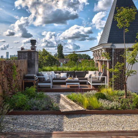 Roof garden in Rotterdam