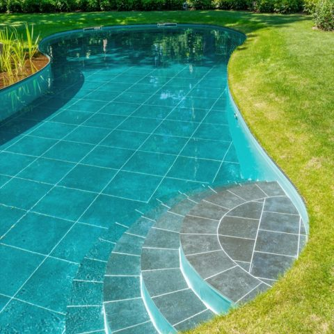 Crystal clear, winner of the silver category best swimming pond builder
