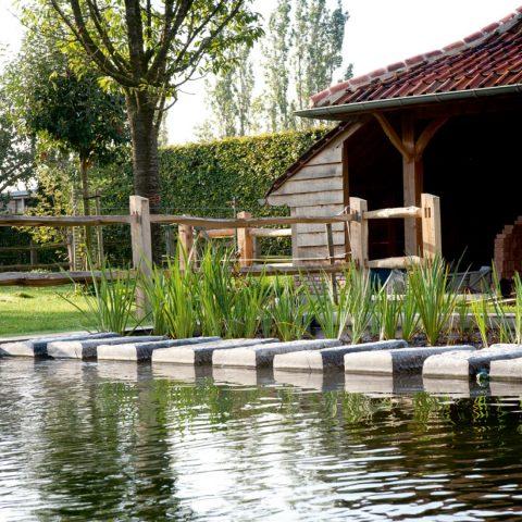 Swimming pond Nevele