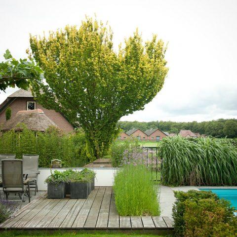 Villa garden Elspeet