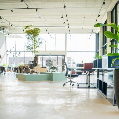 Project Workbrands te Eindhoven