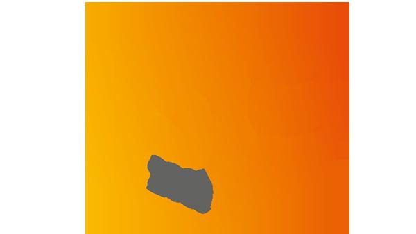 IPLS 2019