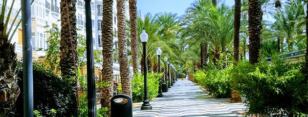 Foto de Alicante