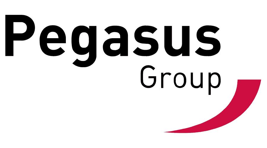 Pegasus Planning Group Limited