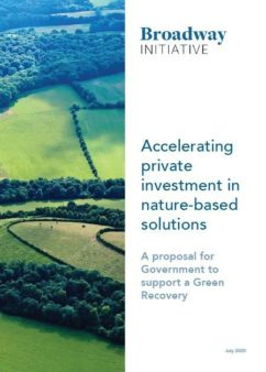 Accelerating private investment front cover