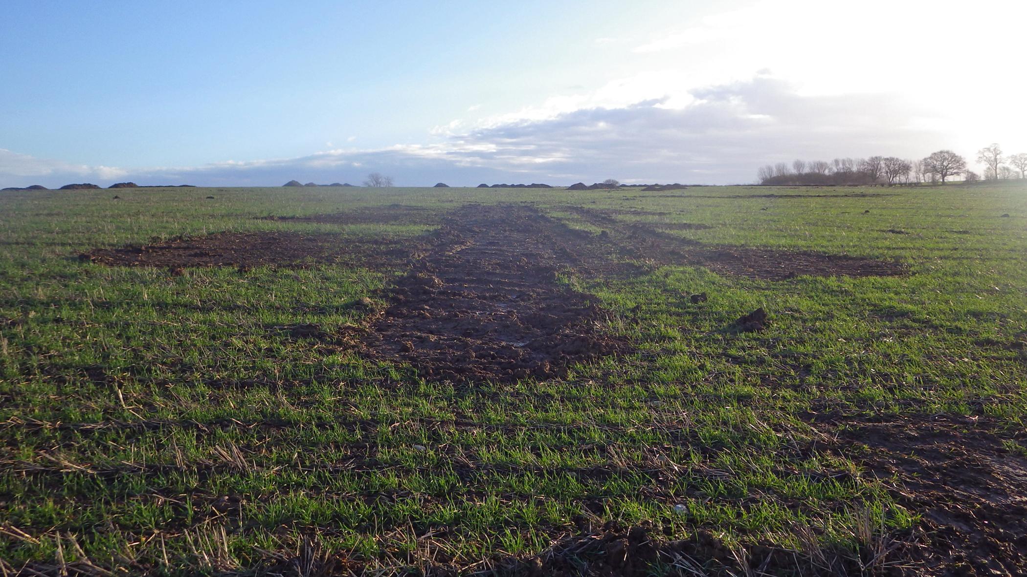Backfilled arable field