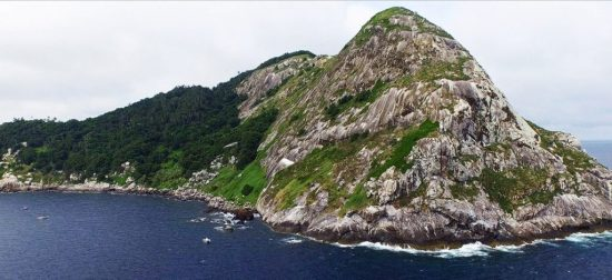 Ilha da Queimada Grande (Snake Island)