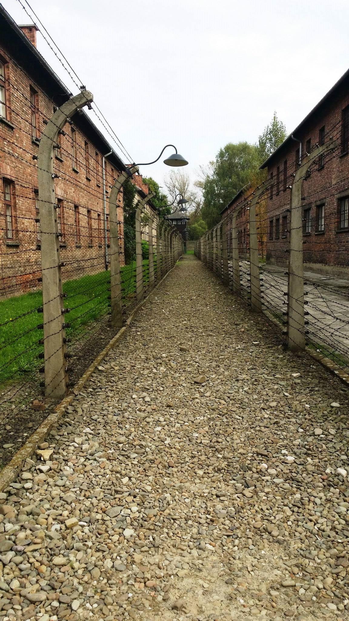 Auschwitz 11