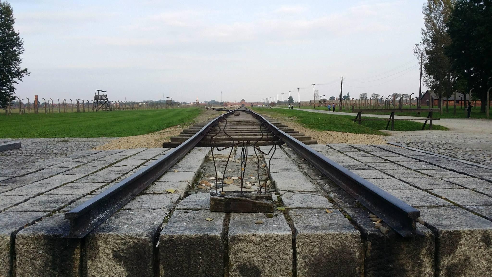 Auschwitz 15