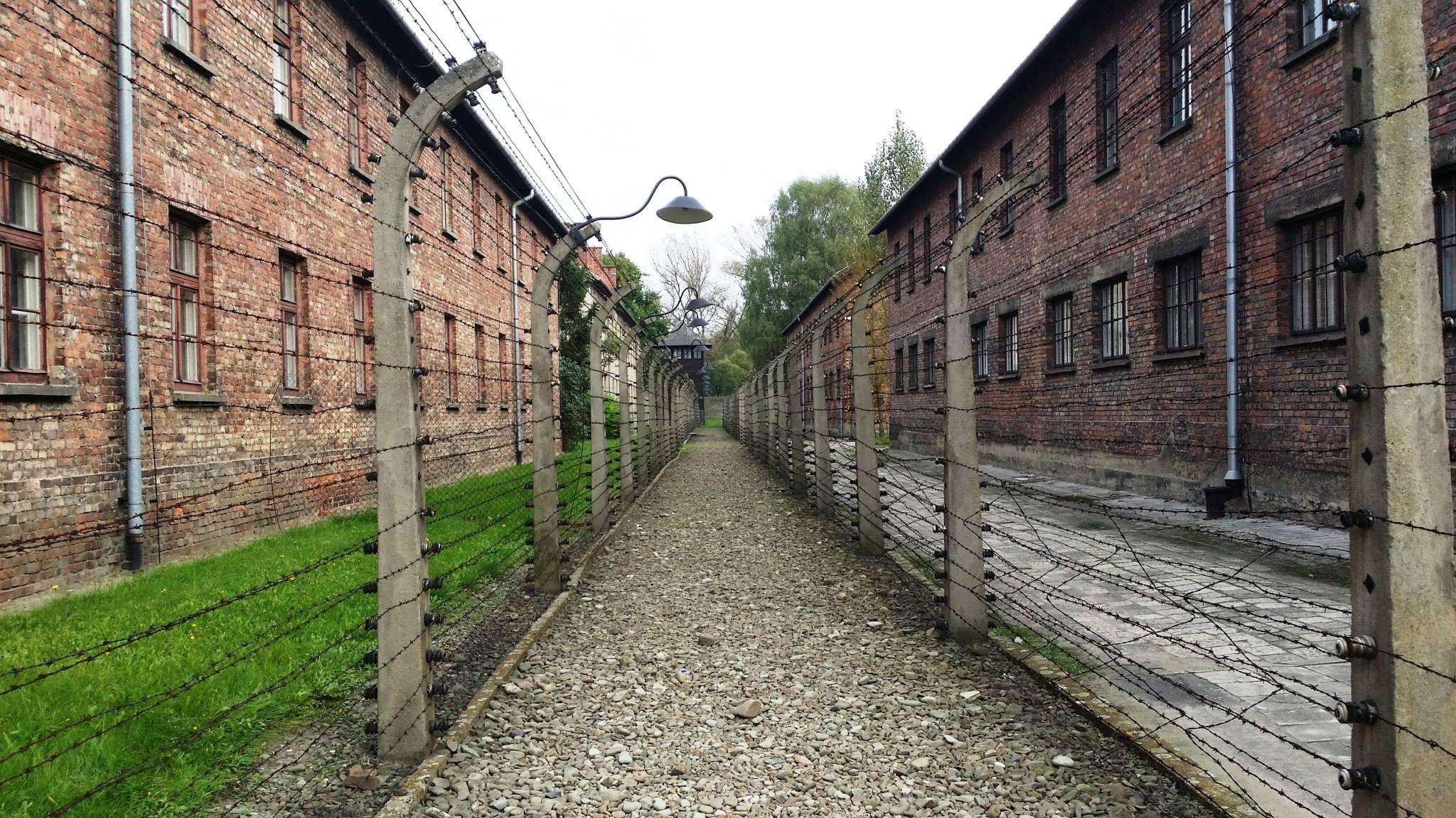 Auschwitz 9