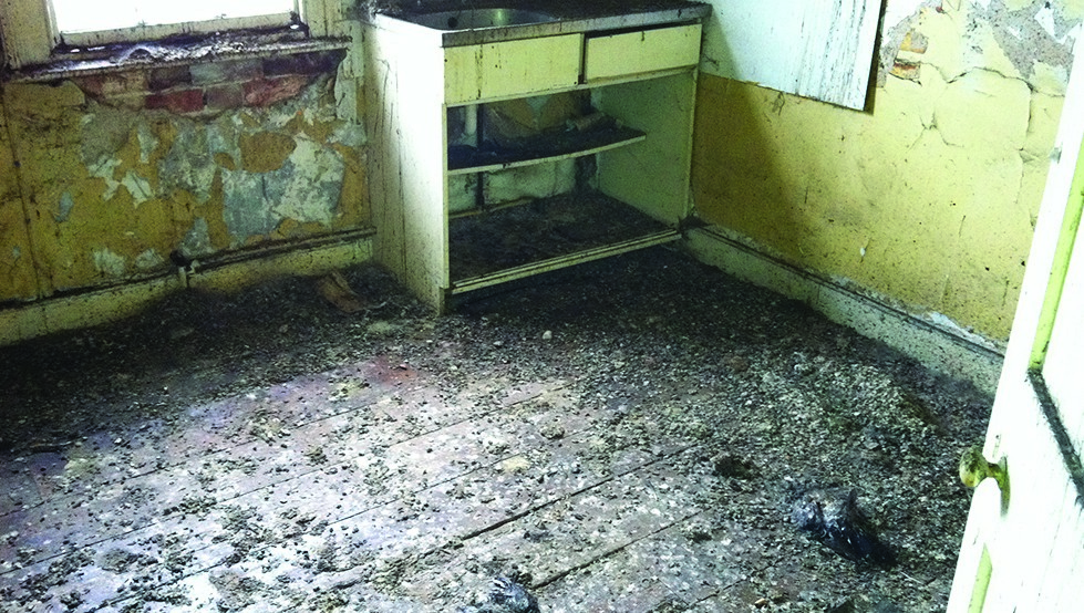environmental cleaning asbestos removal