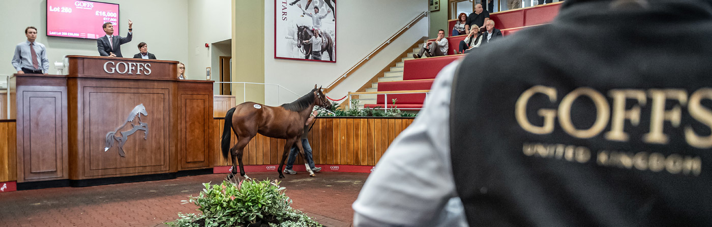 Picture of Goffs UK