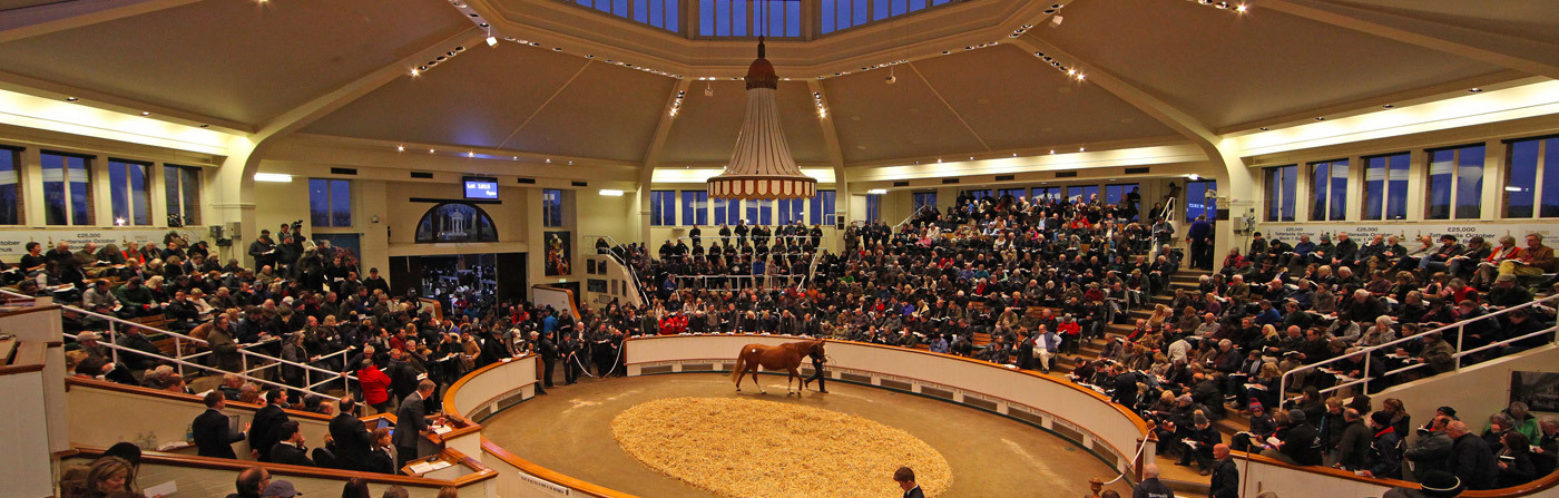 Picture of Tattersalls