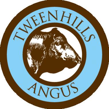 Spring Lodge logo
