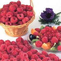 5 Raspberry Malling Jewel