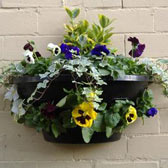 Baskets/Wall Planters