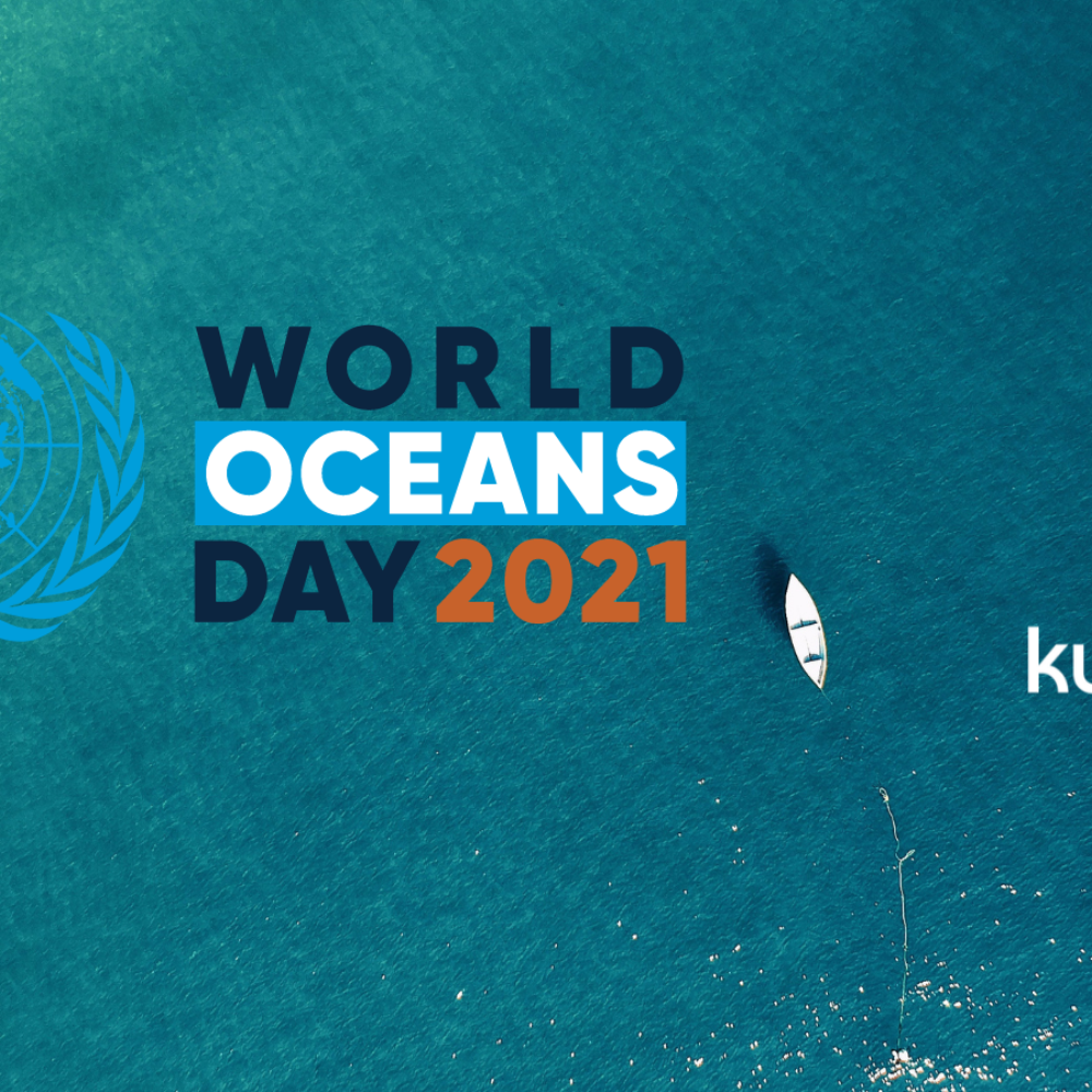 World Oceans Day Article Thumbnail