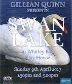 Swan_Lake-_Web.jpg