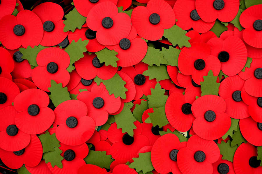 poppies_bigger.jpg
