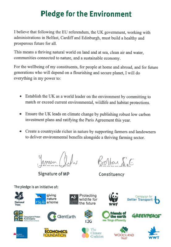 Pledge_for_the_Environment.jpg