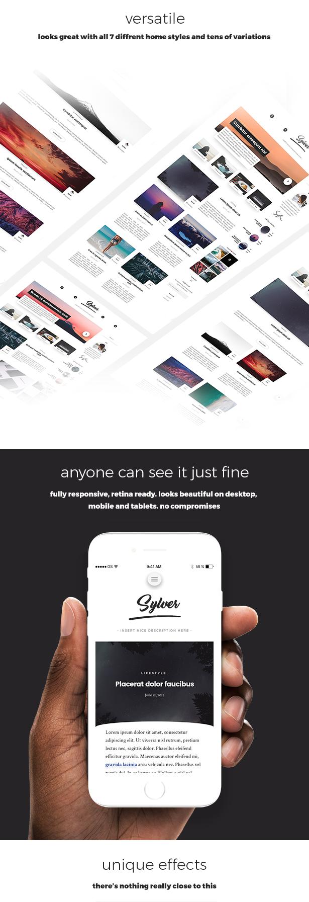 Sylver - Responsive WordPress Blog Theme - 4