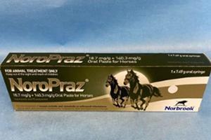 NoroPraz
