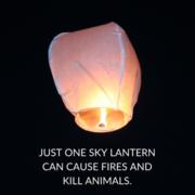 Campaign to Ban Sky Lanterns