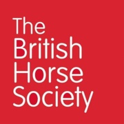 BHS Horse First Aid Certificate