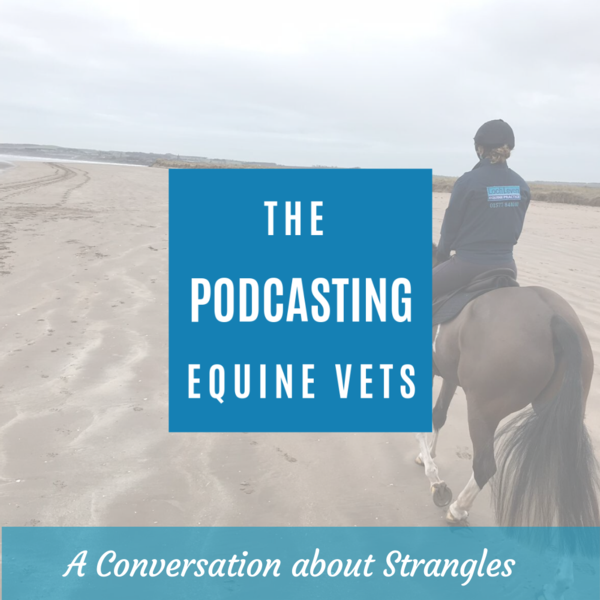 A Conversation about Strangles - Eps 12