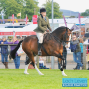 Why Winning A Rosette at The Royal Highland Show isn't the Be All and End All........