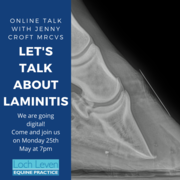 Let's Talk About Laminitis - Online Webinar 25th May 7pm