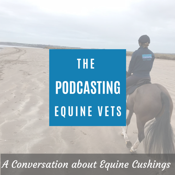A Conversation About Equine Cushings (PPID)  Episode 3