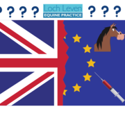 What Does a No-Deal Brexit Mean for Me and My Horse?!