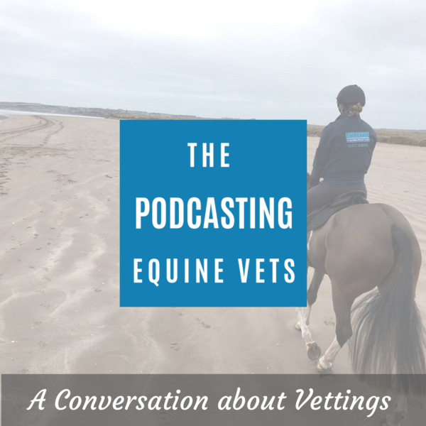 A Conversation about vettings - Ep 7