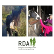 Sponsored Horses