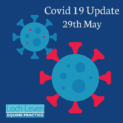 COVID 19 UPDATE - 29th May 2020