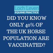 Only 40% of All Horses in the UK are Vaccinated