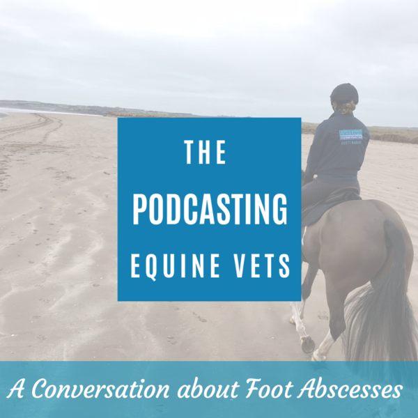 A Conversation about foot abscesses